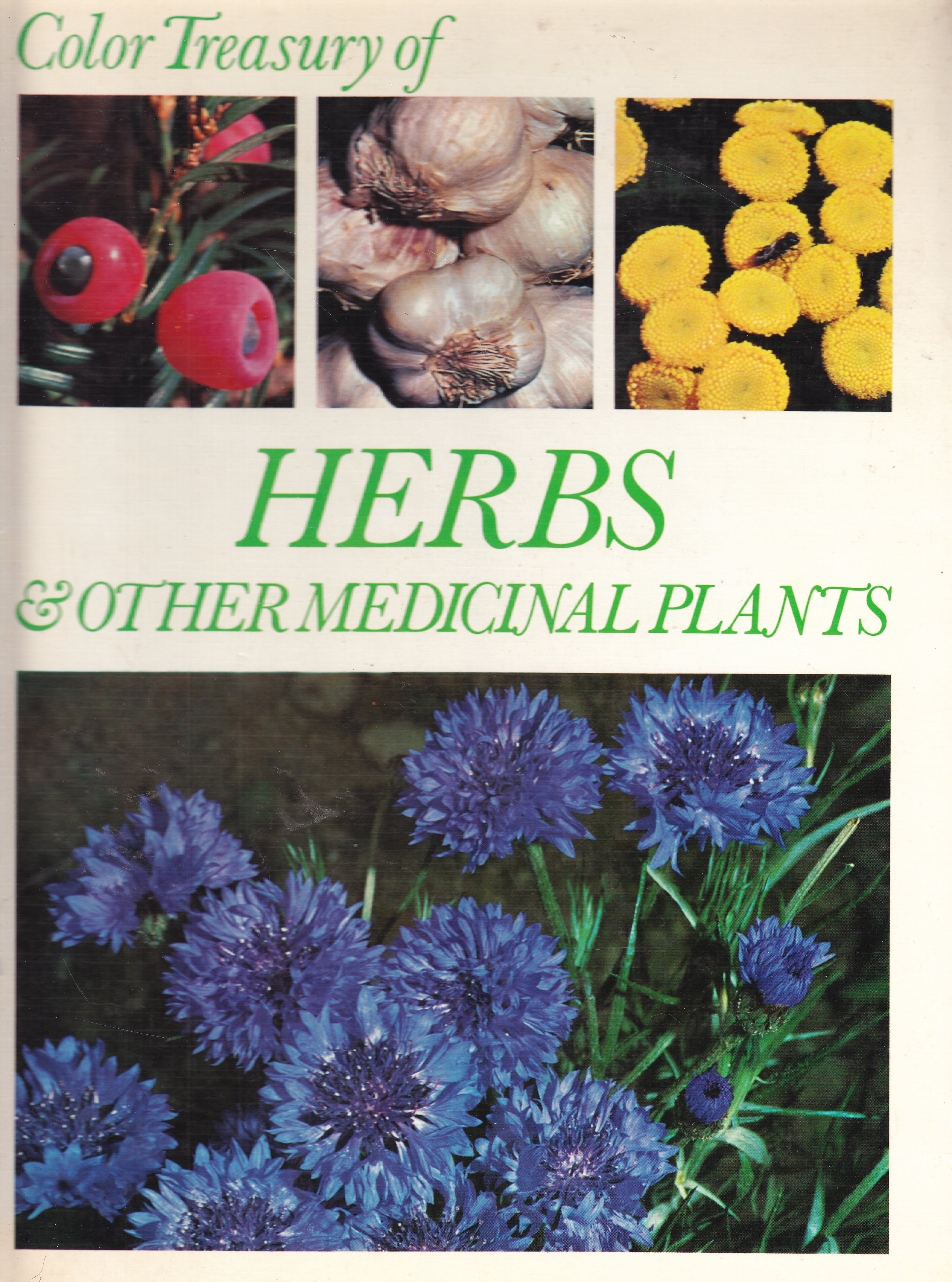 Image for Herbs & Other Medicinal Plants