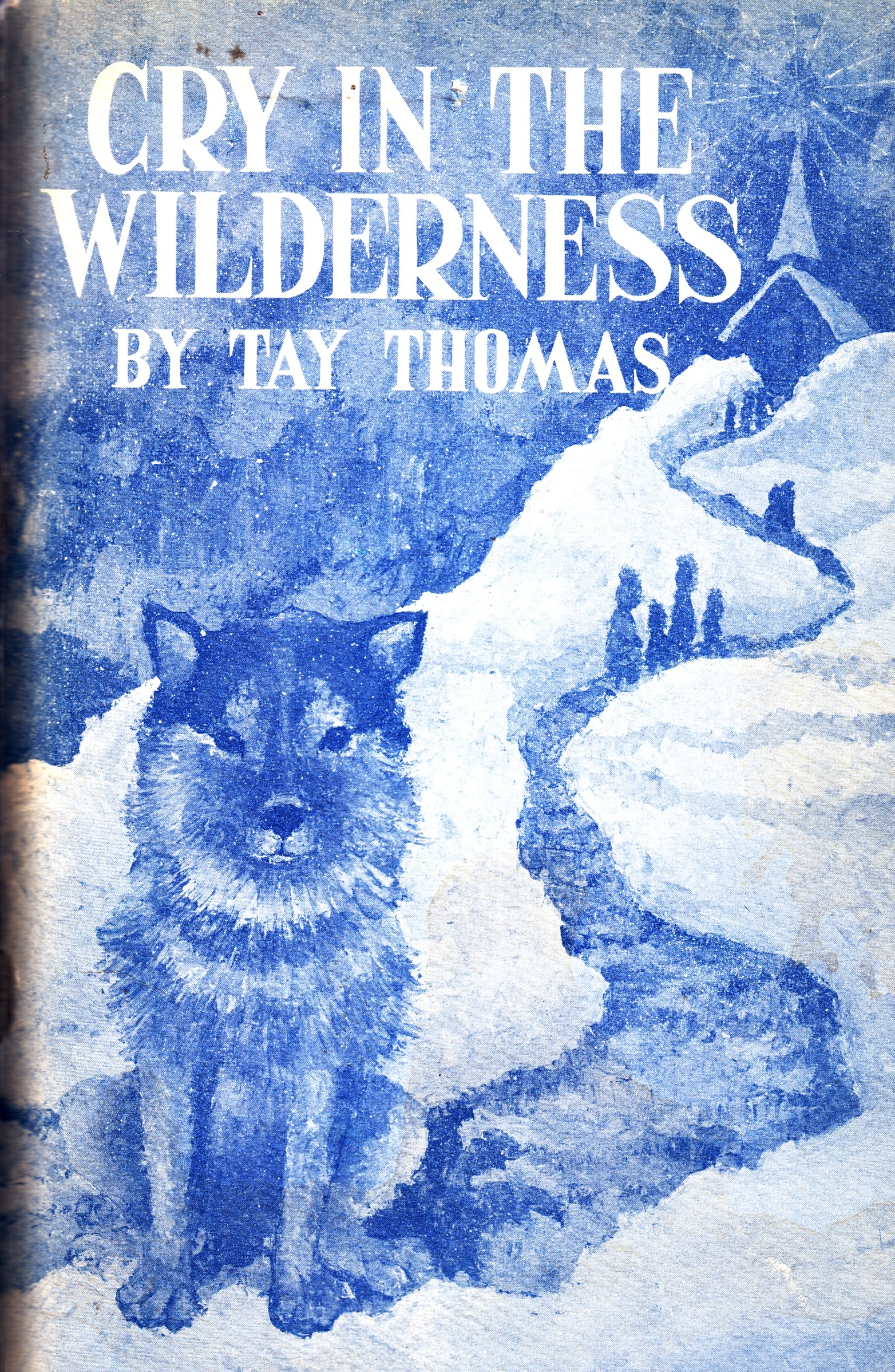 Image for Cry in the Wilderness