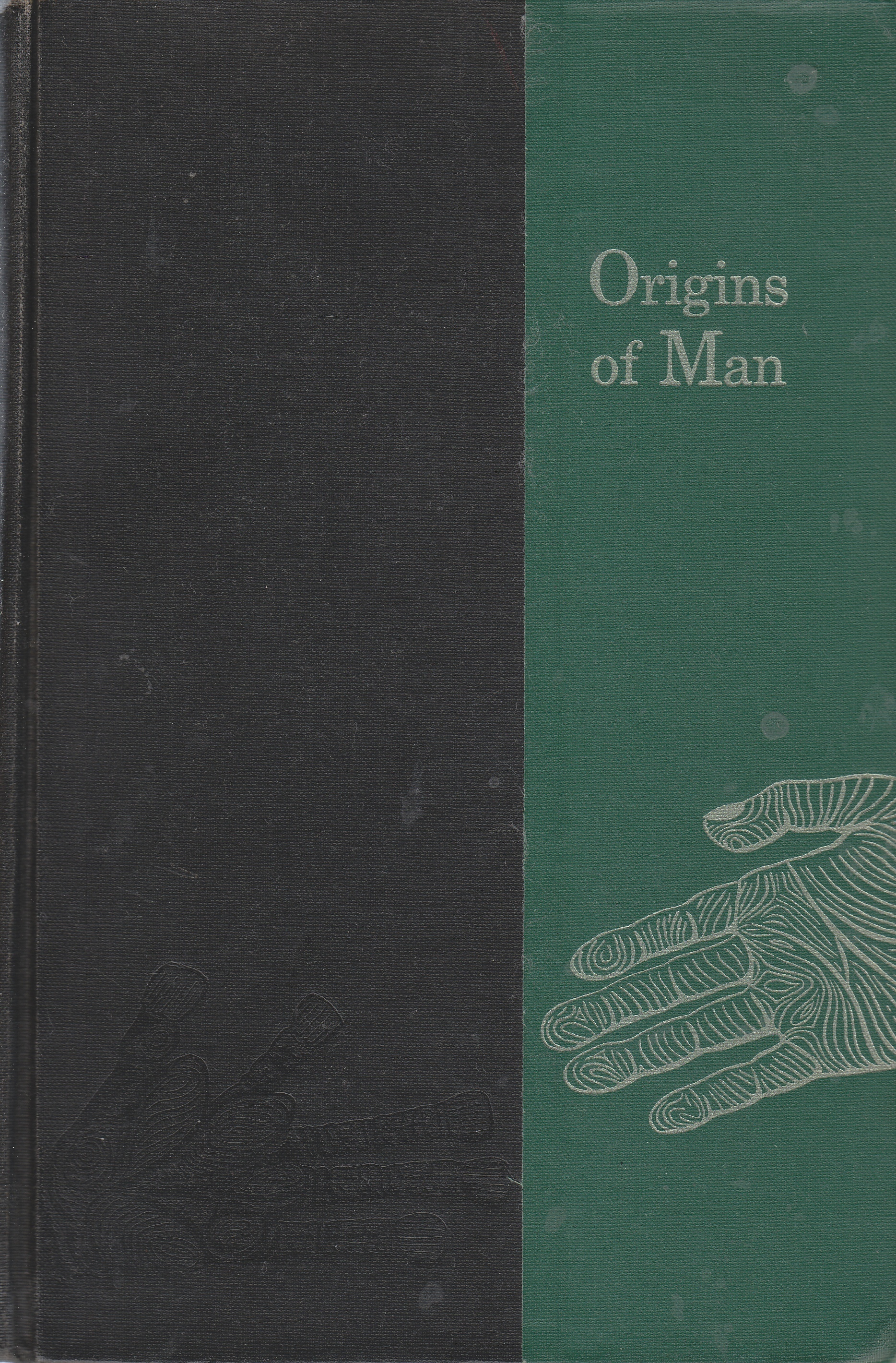 Image for Origins of Man
