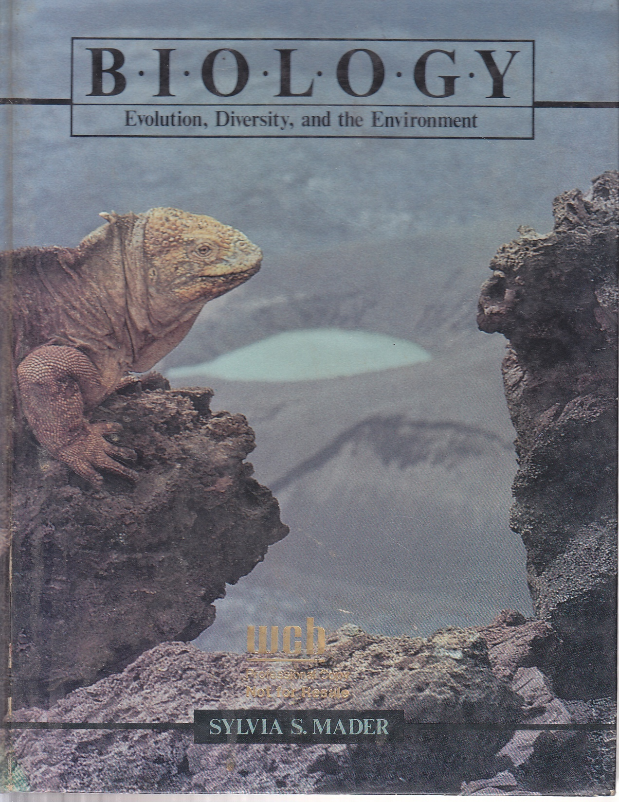 Image for Biology Evolution, Diversity and the Environment